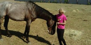 Our first horse for therapy
